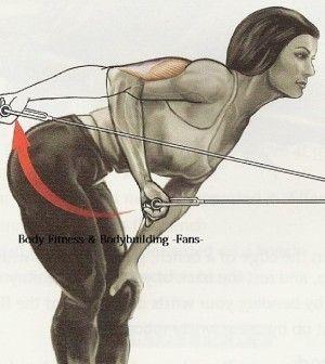 Cable-Kickback-300x336