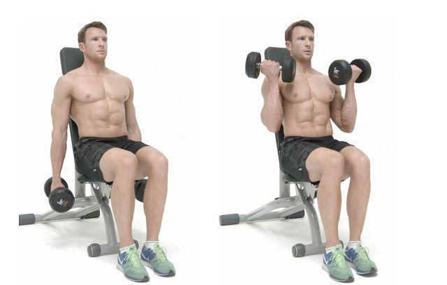 Curl bíceps Sentado