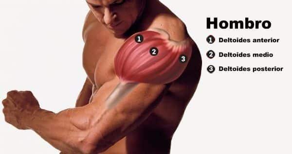 Ejercicios de hombros