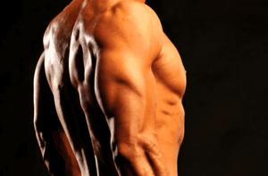 ejercicios tríceps