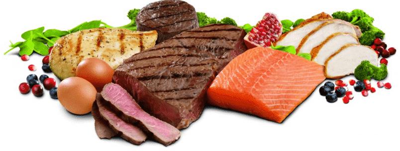 Como quemar grasa con proteinas