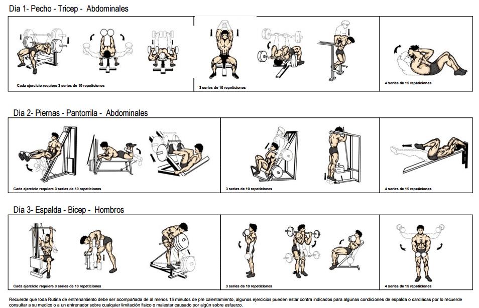 Rutina principiantes de 3 dias tmf for Rutina fitness