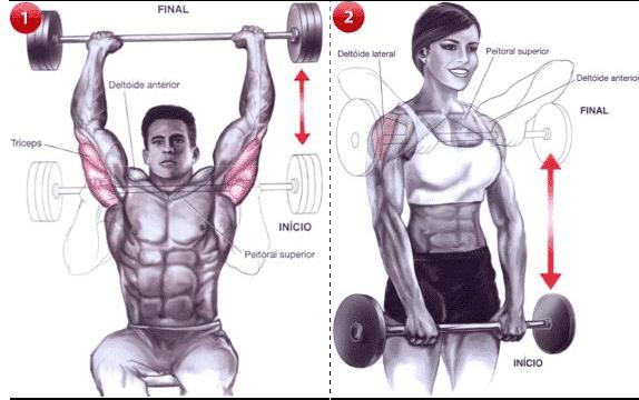 entrenamiento de deltoides 1