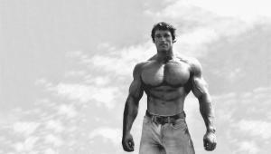 Entrenamiento de Arnold Schwarzenegger