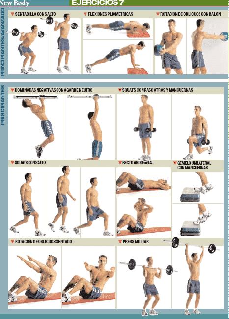Ejercicios para adelgazar los brazos en el gimnasio chistoso