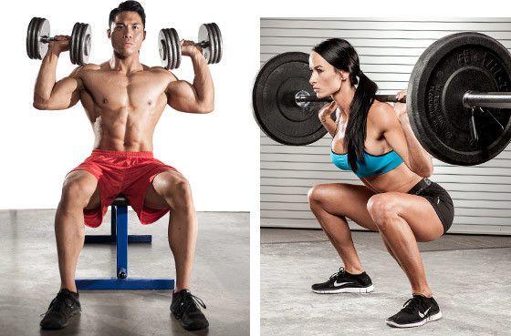 musculacion para principiantes 1