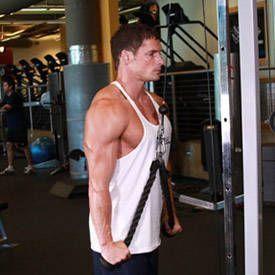 Triceps Pushdown en cuerda