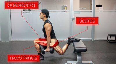 Músculos que implica la sentadilla búlgara
