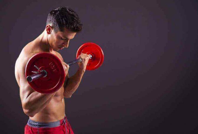 como aumentar masa muscular: entrenamiento correcto