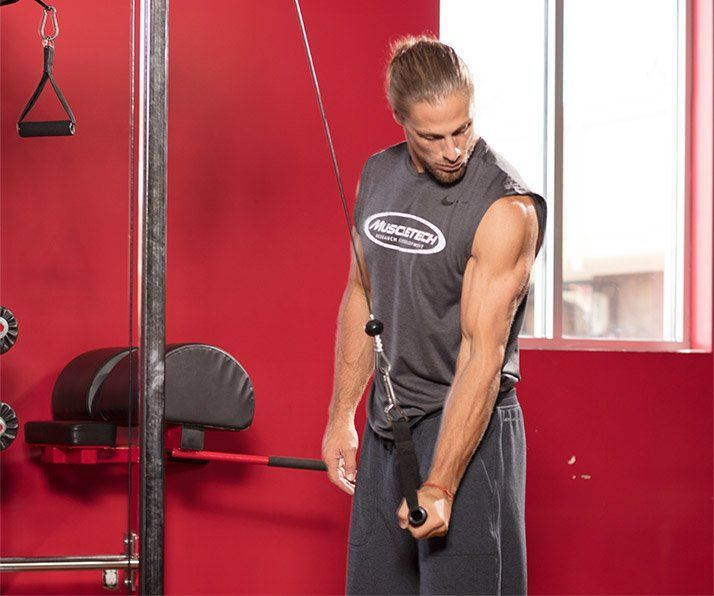 Rutina de triceps para marcar