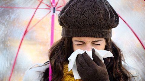 limon y los resfriados
