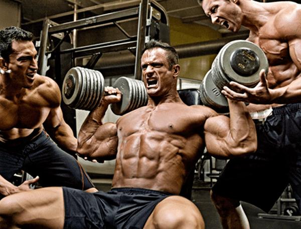 series necesito hacer para aumentar masa muscular