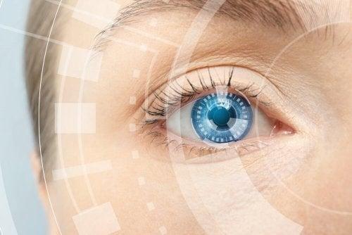 Fisiologia della visione cromatica 500x334 1