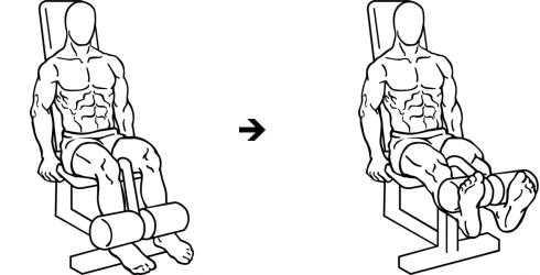 extensiones de piernas