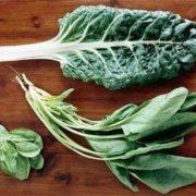 spinach 46830 1 2 e1551064625338