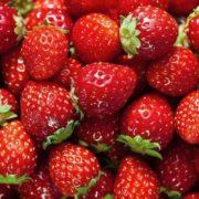 strawberries 2 e1543282415445