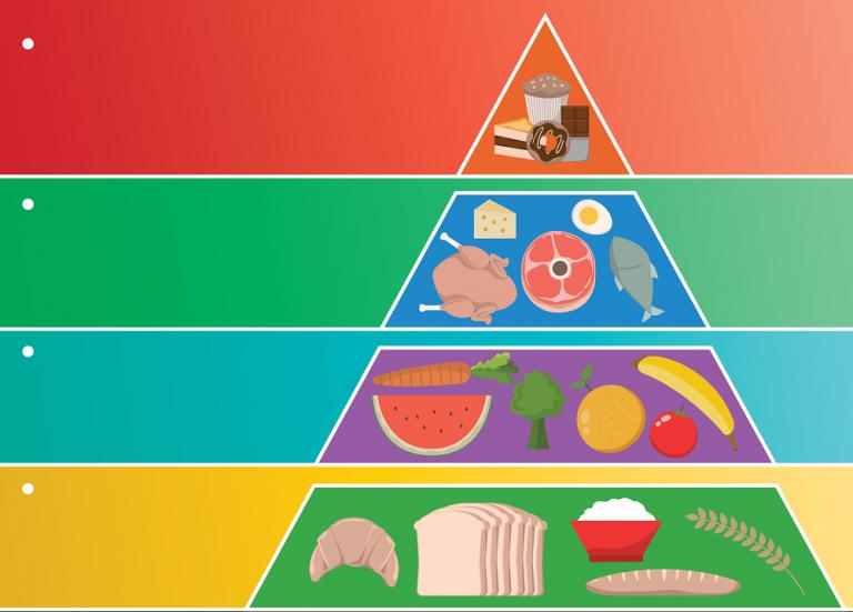 pirámides de nutrición y entrenamiento